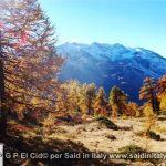 G P El Cid per Said in Italy blog 2015 2010 10 18 Valgrisenche e Aosta 038