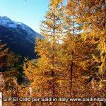 G P El Cid per Said in Italy blog 2015 2010 10 18 Valgrisenche e Aosta 051