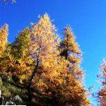 G P El Cid per Said in Italy blog 2015 2010 10 18 Valgrisenche e Aosta 054