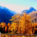 G P El Cid per Said in Italy blog 2015 2010 10 18 Valgrisenche e Aosta 073