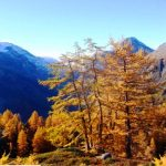 G P El Cid per Said in Italy blog 2015 2010 10 18 Valgrisenche e Aosta 076