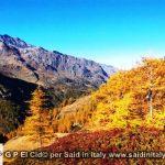 G P El Cid per Said in Italy blog 2015 2010 10 18 Valgrisenche e Aosta 080