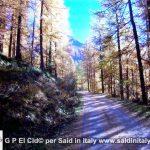 G P El Cid per Said in Italy blog 2015 2010 10 18 Valgrisenche e Aosta 101