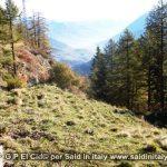 G P El Cid per Said in Italy blog 2015 2010 10 18 Valgrisenche e Aosta 131