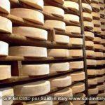 G P El Cid per Said in Italy blog 2015 2010 10 18 Valgrisenche e Aosta 150
