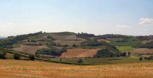 Fotografia di un panorama tipico del Monferrato
