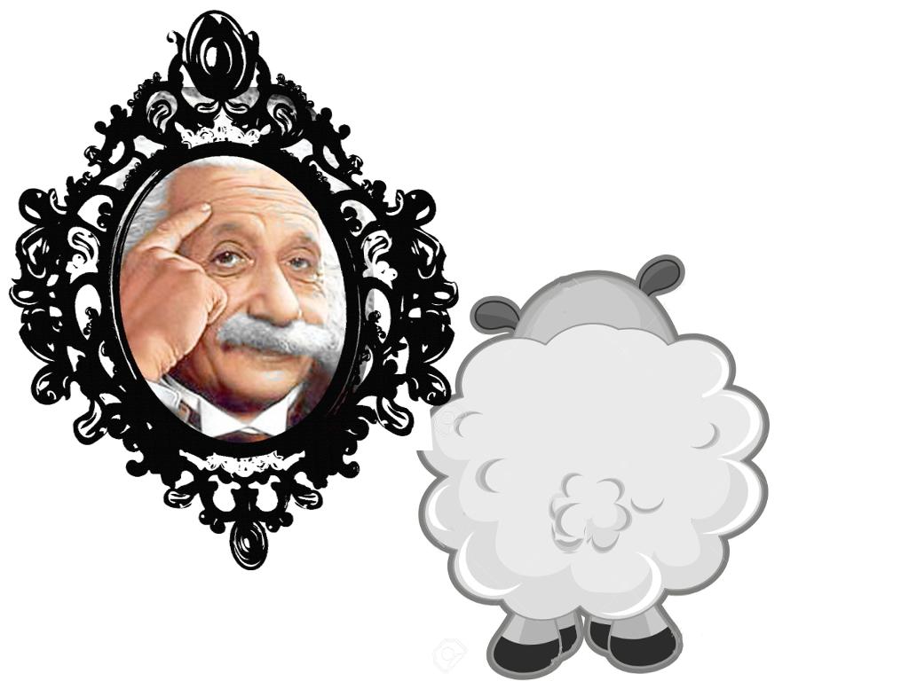 L'idiota pecoreccio emblematico 2.0 allo specchio 3.0